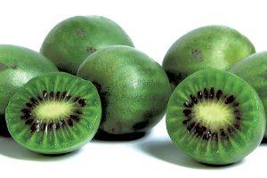 minikiwi-nergi-owoce