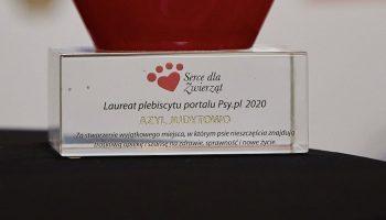 Judytowo – pierwszy w Polsce azyl dla szczeniąt i psów niepełnosprawnych nagrodzony